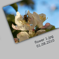 Create a Wallview for Images with Silverlight: Code